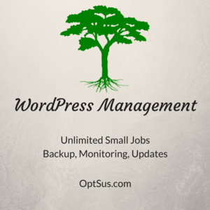 WordPress Management by OptSus Marketing